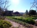 garden-and-resto