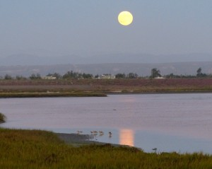 Moonrise over San Quintin