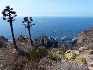 Pacific Ocean from La Bufadora